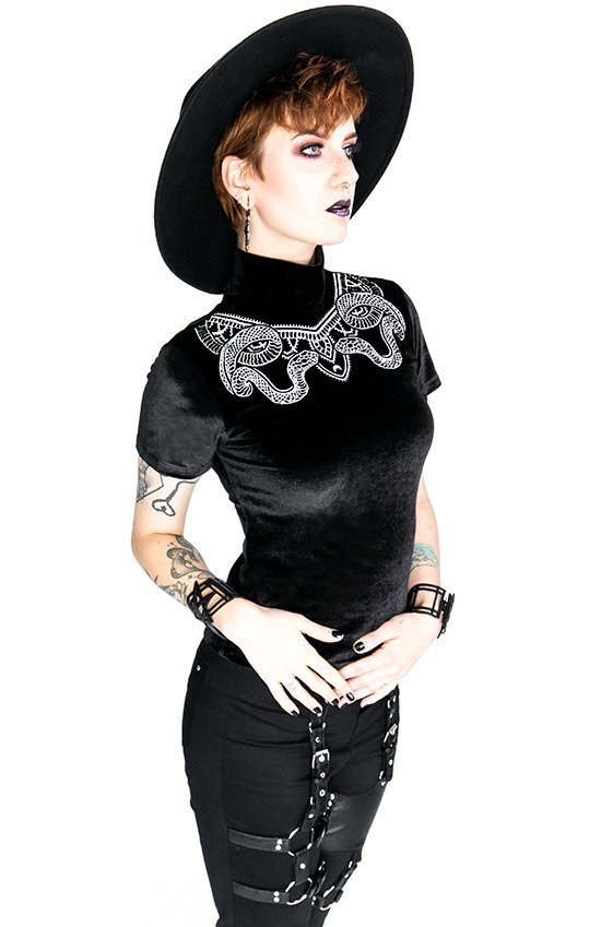 Black Velvet Top with Snake embroidery